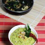 beerakaya pachadi recipe | ridge gourd chutney recipe