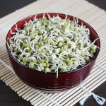 mung bean sprouts, how to sprout mung beans (green gram sprouts)