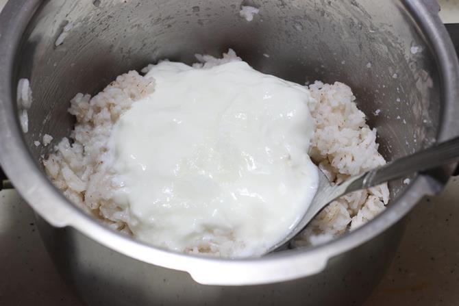 addition of yogurt to pot to make thayir sadam recipe