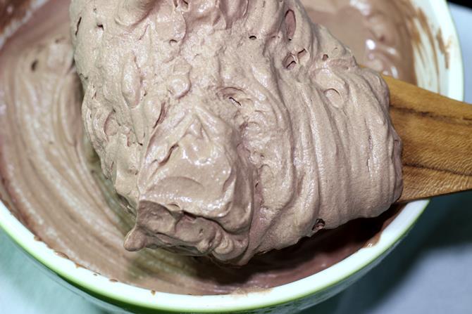 soft serve homemade chocolate ice cream ready