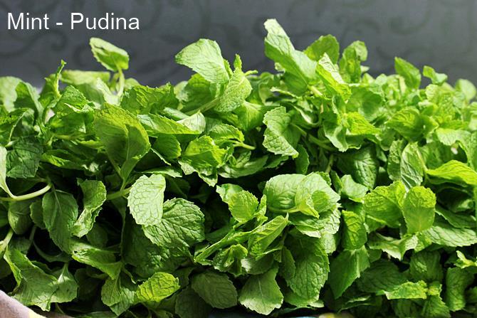 pudina for green chutney recipe